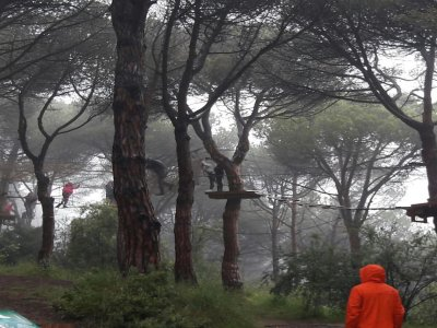 El Bosc Vertical Mataró