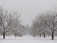 瓦尔诺德标志雪景观的4x4 4x4的