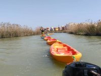 Desembocadura rio Segura