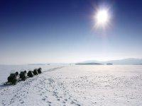 在比利牛斯山脉雪地汽车