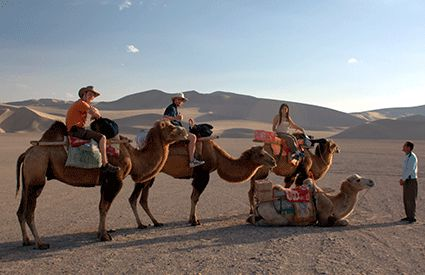 Paseos en Camello en Valencia