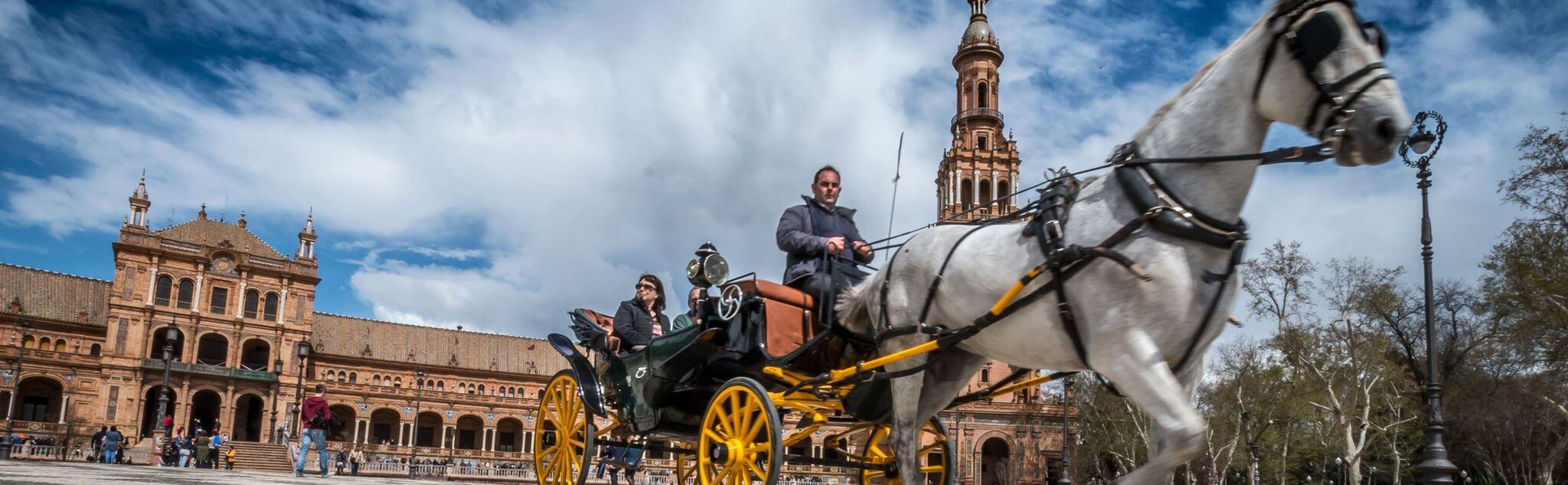 Carriage Riding in Spain