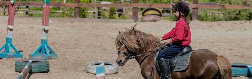 Ofertas de Clases de Equitación  Burgos