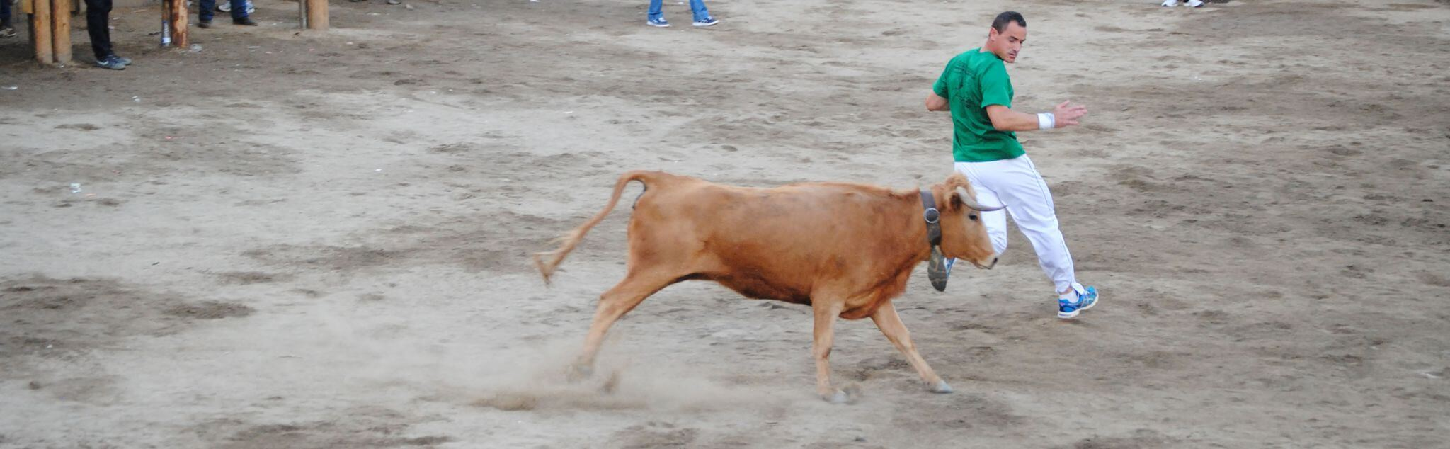 Bull Fighting in Miraflores De La Sierra