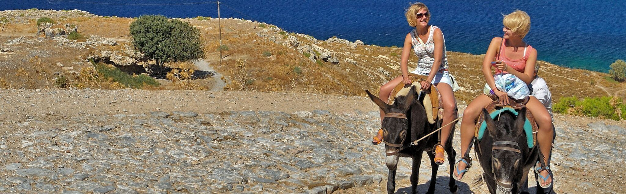 Donkey Riding in Spain