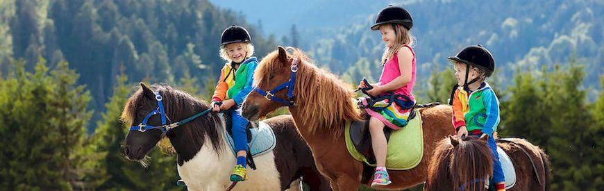 Ofertas de Campi Equitazione  Burgos