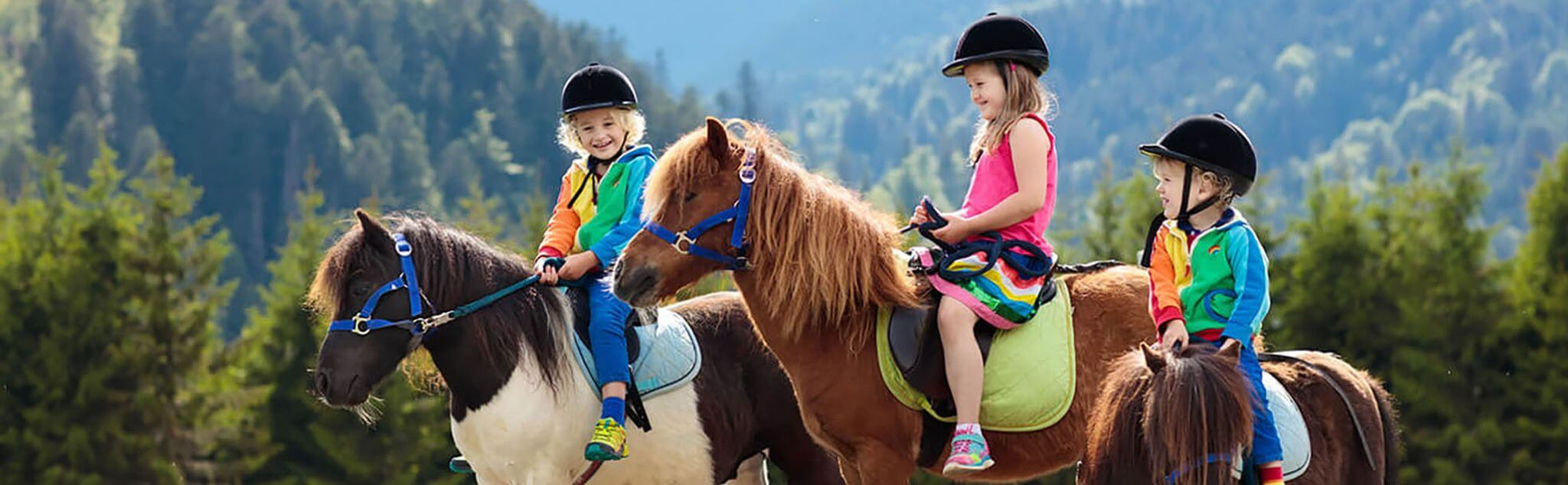 Horse Riding Camps in El Espinar