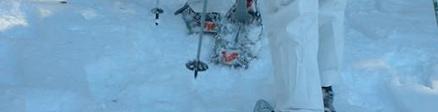Grupo de Raquetas de Nieve