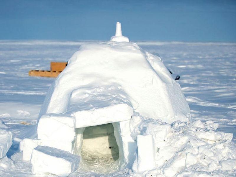 Scopri come creare il tuo rifugio invernale