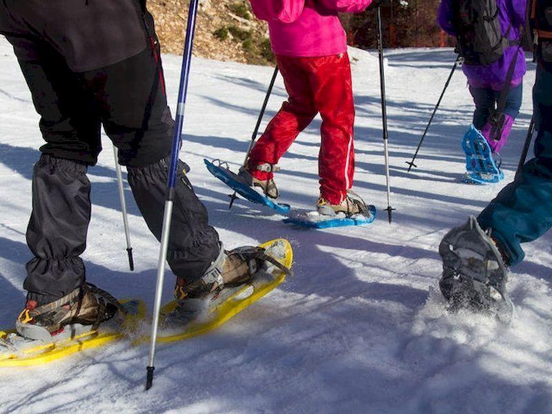 在不知道如何滑雪的情况下在雪地上玩耍