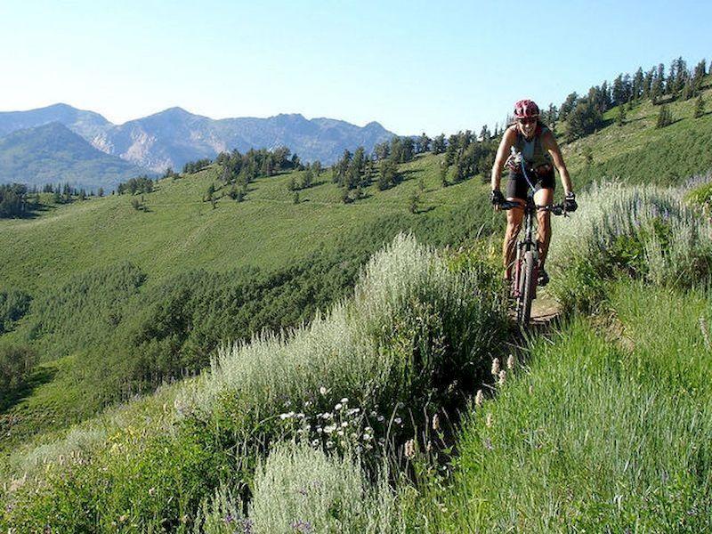 Prenota un percorso in bicicletta e lascia il tuo a casa