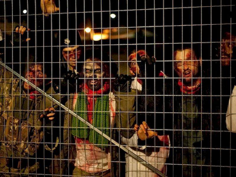Sopravvivi a un'apocalisse di zombi!