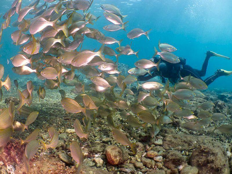 Conoce las playas de España desde las profundidades