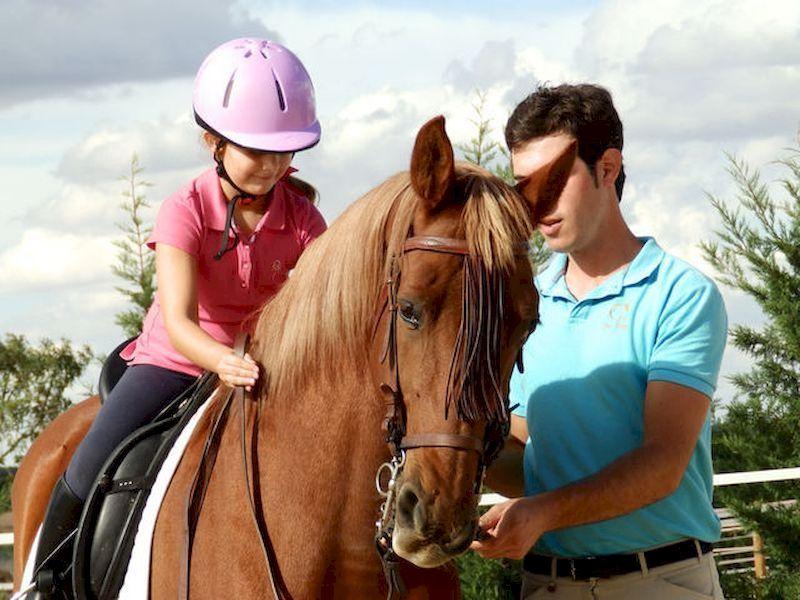 La cohabitation avec les chevaux