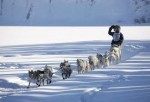 Excursi�n en mushing