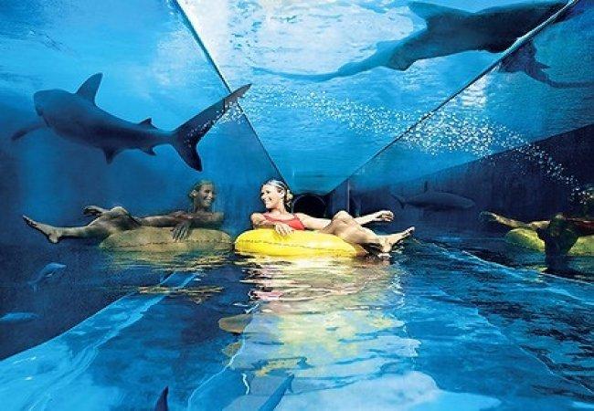 Parques acuáticos con tiburones!!