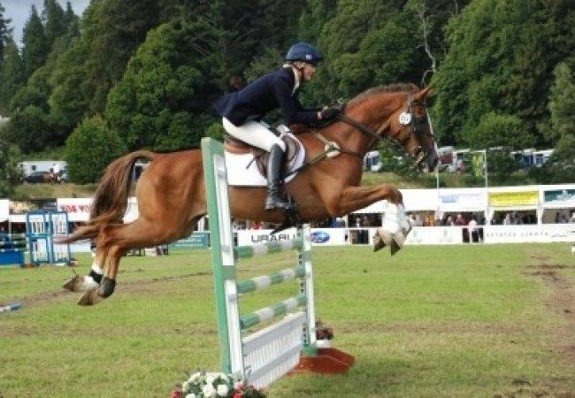 Saltar obstáculos con un caballo